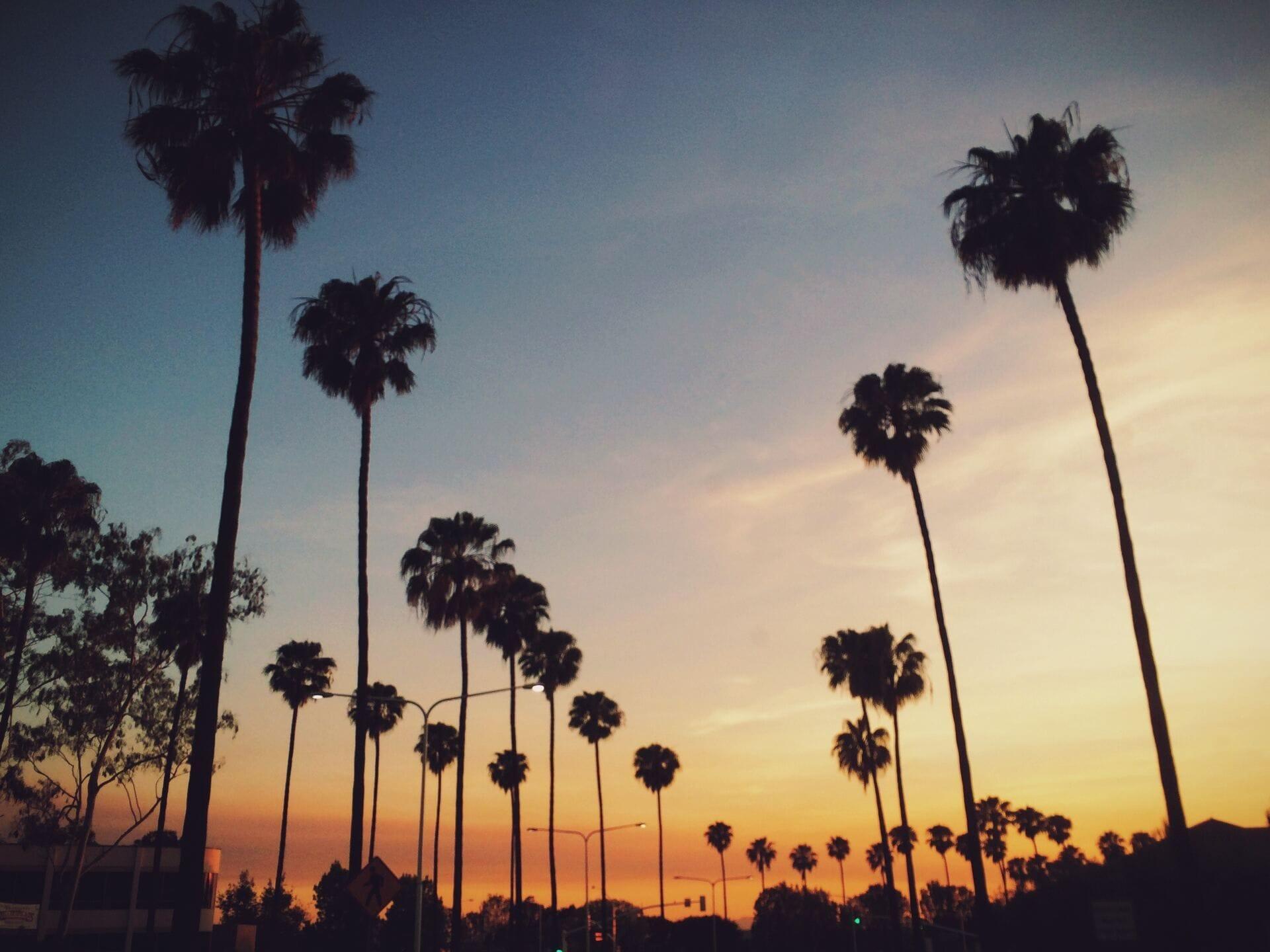 5 Surprisingly Affordable Los Angeles Wedding Venues