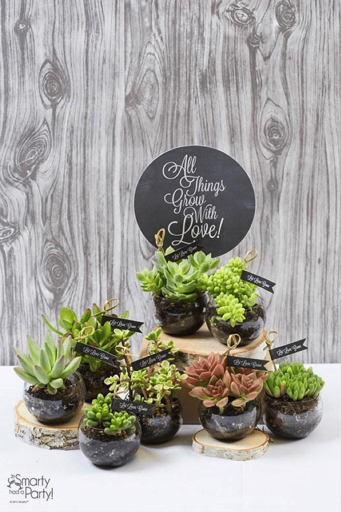 DIY Succulent Wedding Favor