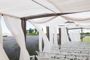 rustic wedding venue bay area example