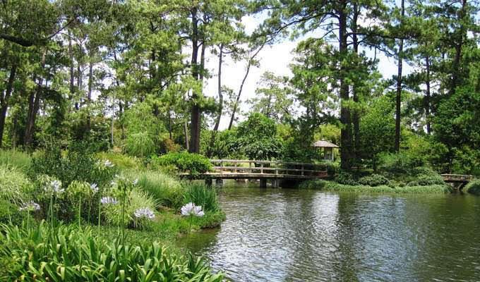 proposal idea houston japanese garden hermann park