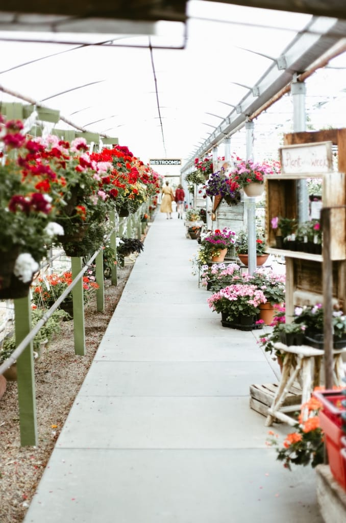 flower wholesale market