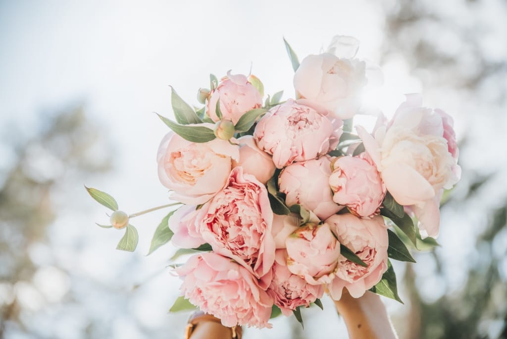 pink peonies in bridal bouquet