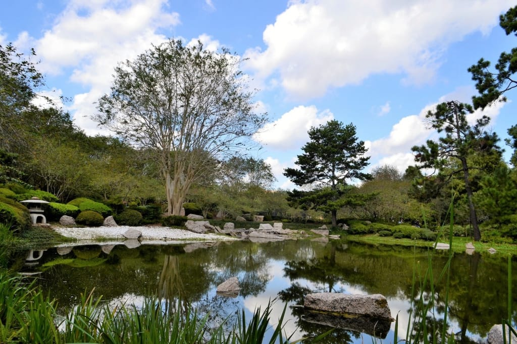 japanese garden in houston in the daytime