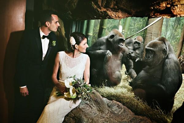 bronx wedding venues zoo