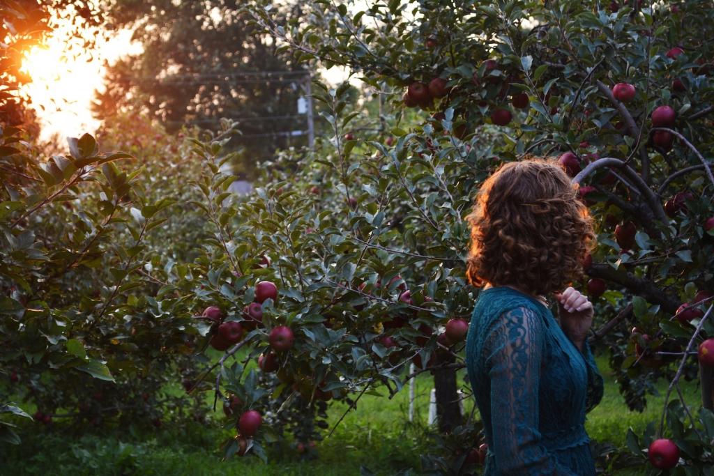 fall proposal idea apple orchard