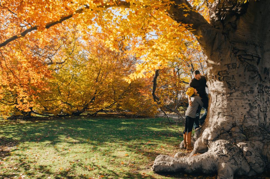 Engagement Photo Ideas: Seasonal backdrops