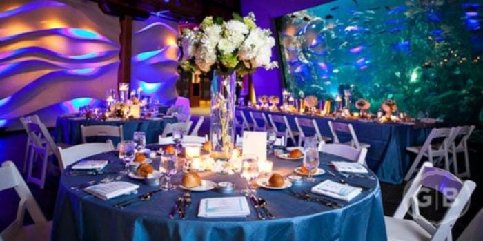 seattle aquarium wedding